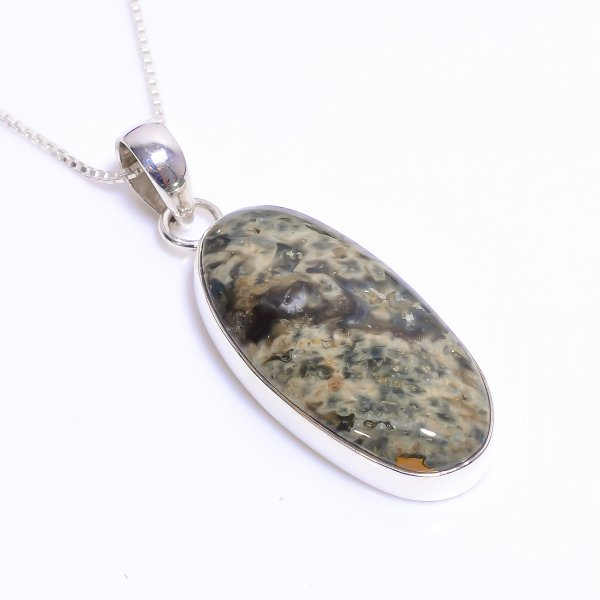 Natural Ocean Jasper Gemstone 925 Sterling Silver Chain Pendant Necklace